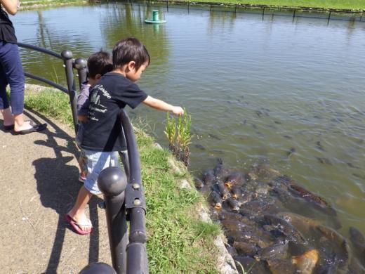 かすみがうら水族館 (1)