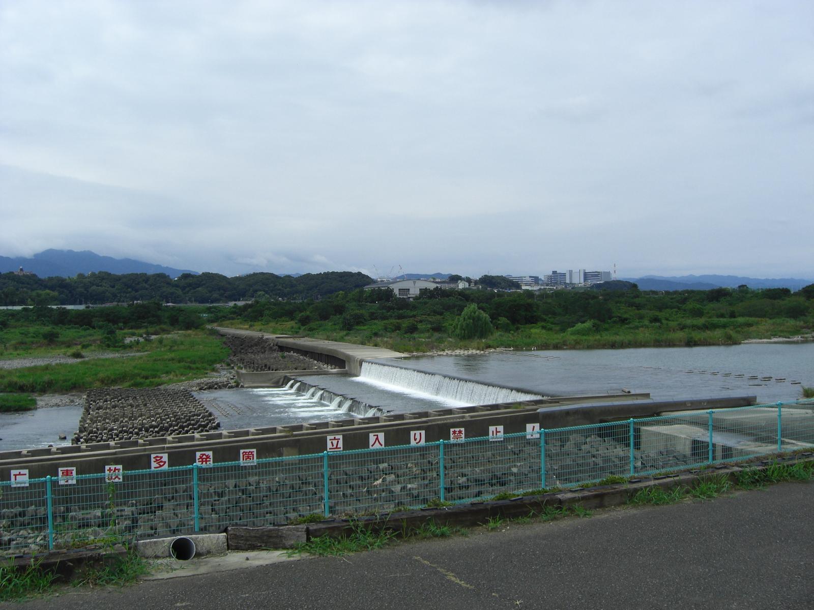 相模川磯部の堰3