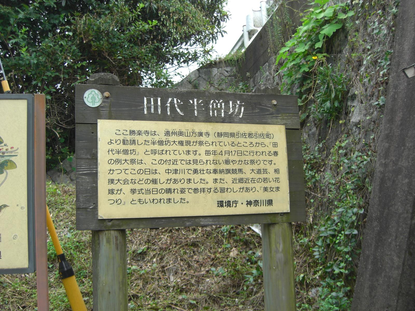 愛川勝楽寺6