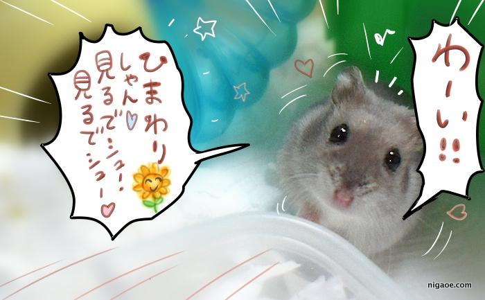 こ・・こんにちは、向日葵しゃん♪
