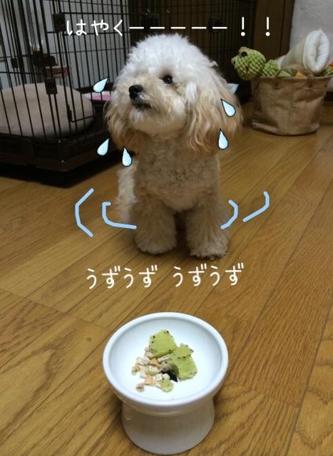 キウイシャーベット食べたい!