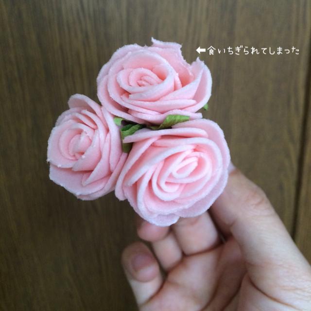 食べられたバラ