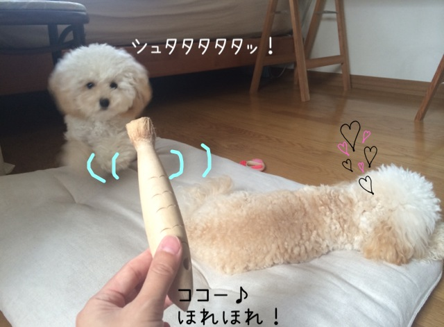 モコはジャイ子なの?8