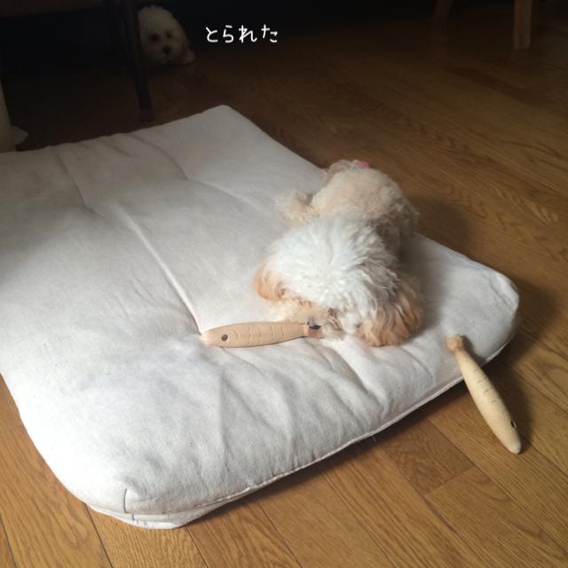 モコはジャイ子なの?12