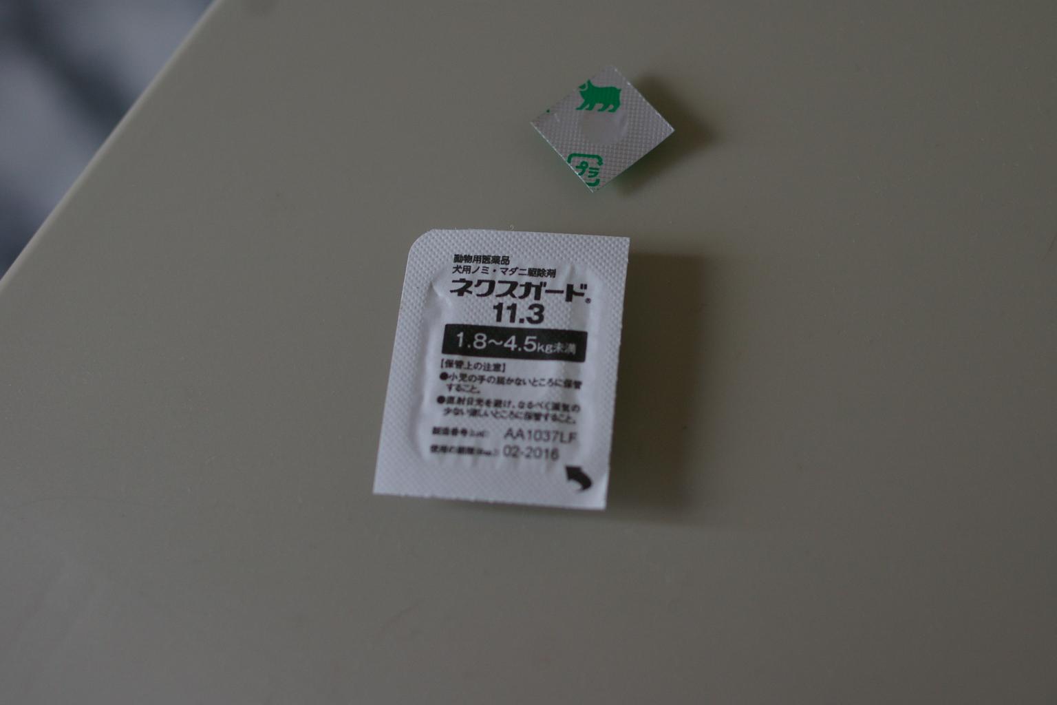 IMGP8345.jpg