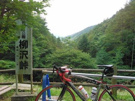 20150905_yanagisawa1.jpg