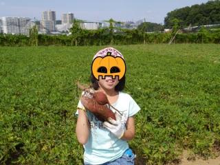 芋ほり_03
